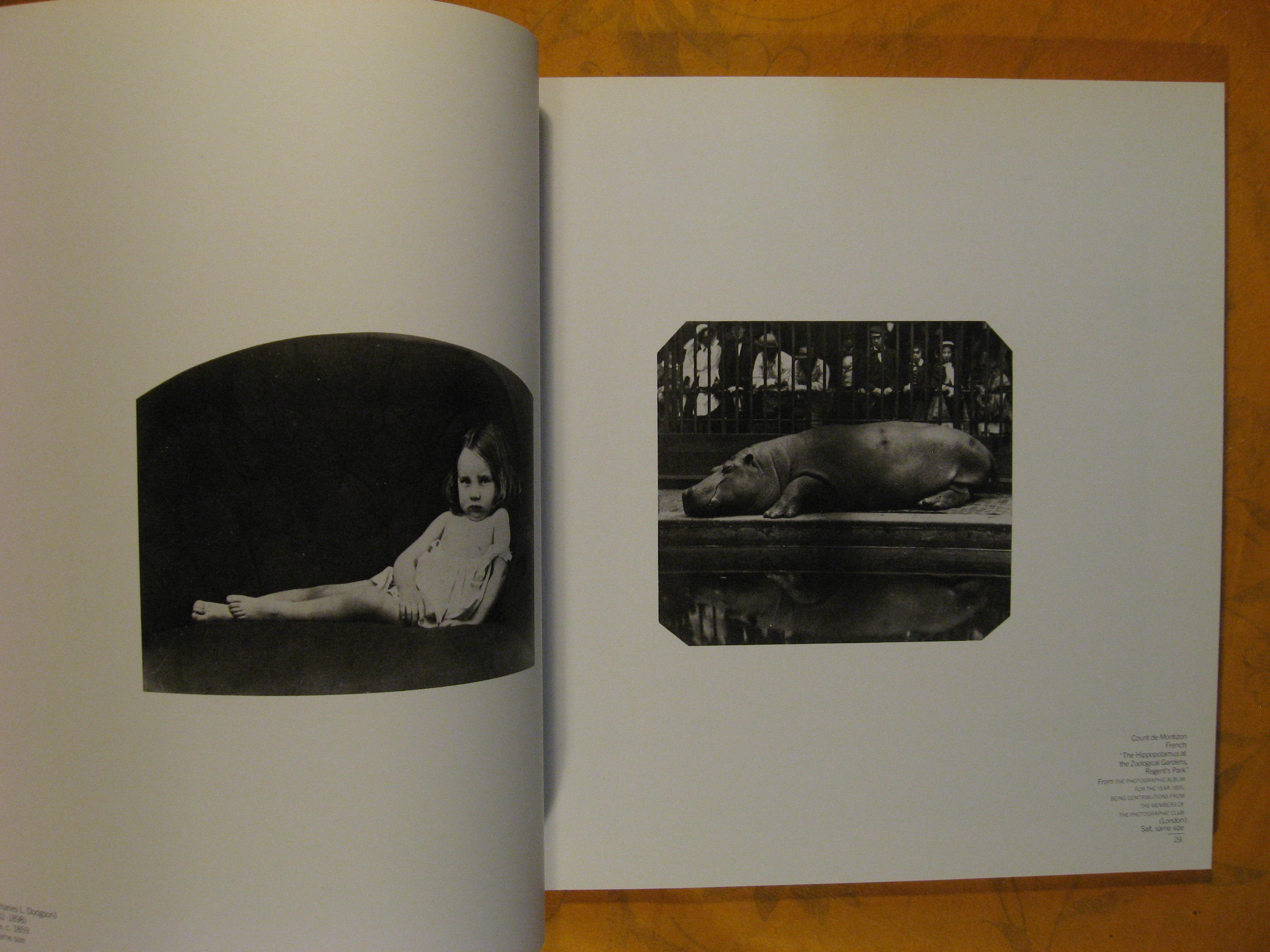 Image for Book of Photographs from the Collection of Sam Wagstaff, A
